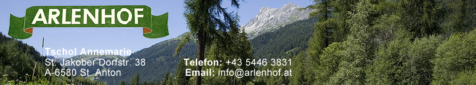 Haus Arlenhof offers rooms and breakfast buffet in St. Anton at the Arlberg Stanzer valley